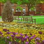 Universities 1