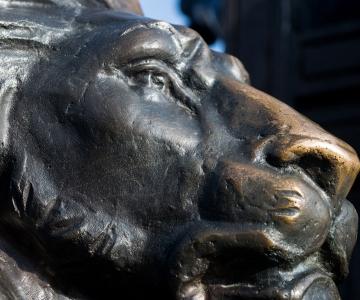 A black sculpture of a lion